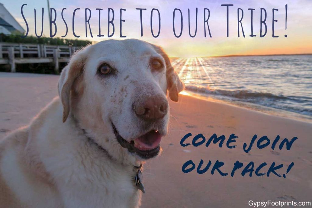 Subscribe to our tribe with a link to the contact page.