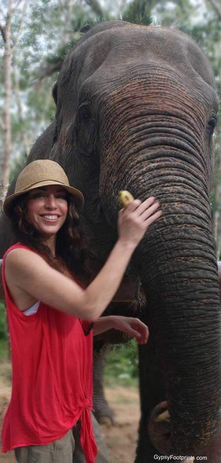 Close up of an elephant and myself. I'm wearing a red shirt and a straw hat, with a banana in my hand.