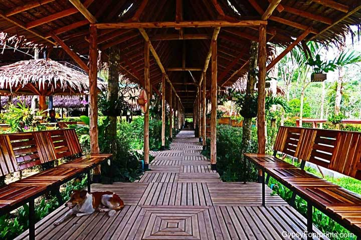 The Phuket Elephant Sanctuary entrance. It is a covered wooden walkway, designed from bamboo and palm fronds, with benches and various design aspects.