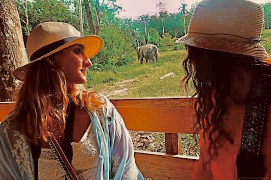 My friend Taylor and myself sitting in the safari jeep, with an elephant in the distance. We are both wearing straw hats.