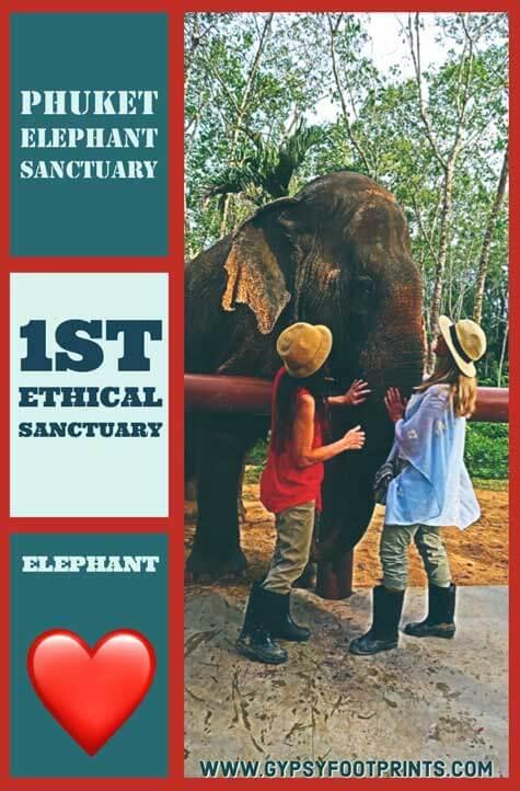 Phuket Elephant Sanctuary. My article about the 1st ethical elephant sanctuary in Phuket, Thailand. #phuket #thailand #ethicalsanctuary #Phuketelephantsanctuary #gypsyfootprints