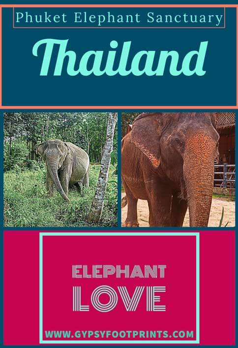 Phuket Elephant Sanctuary. My article about the #phuketelephantsanctuary. the 1st #ethicalsanctuary in #phuket #thailand #gypsyfootprints