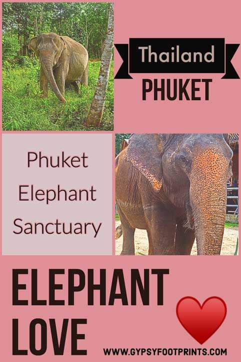Phuket Elephant Sanctuary. My article about the #phuketelephantsanctuary. The  1st #ethicalsanctuary in #phuket #thialand #gypsyfootprints